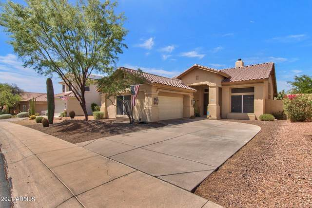 4338 E Desert Marigold Drive, Cave Creek, AZ 85331 (MLS #6249268) :: The Riddle Group