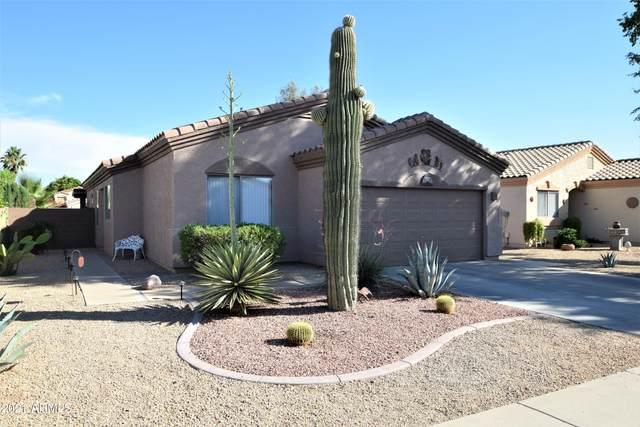 13539 W Post Drive, Surprise, AZ 85374 (MLS #6249290) :: Conway Real Estate