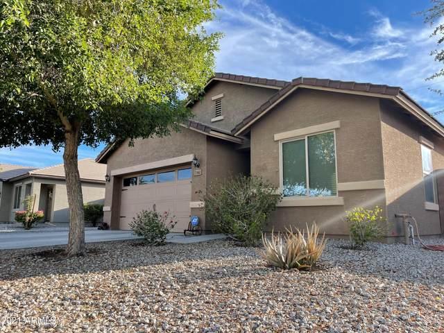 7362 S 254TH Drive, Buckeye, AZ 85326 (MLS #6249295) :: Yost Realty Group at RE/MAX Casa Grande