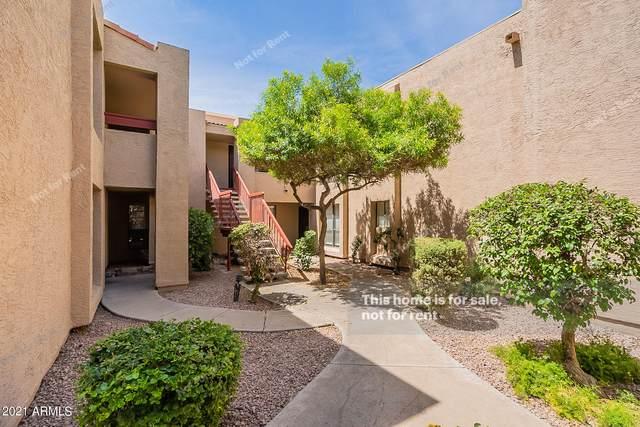 3131 W Cochise Drive #271, Phoenix, AZ 85051 (MLS #6249330) :: CANAM Realty Group