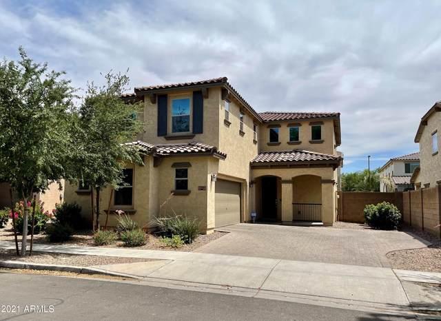 2991 E Megan Street, Gilbert, AZ 85295 (MLS #6249369) :: Executive Realty Advisors