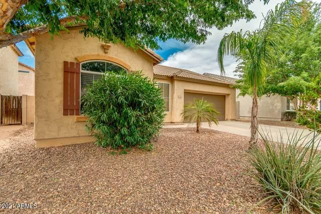 1120 E Bosi Street, San Tan Valley, AZ 85140 (MLS #6249382) :: Conway Real Estate