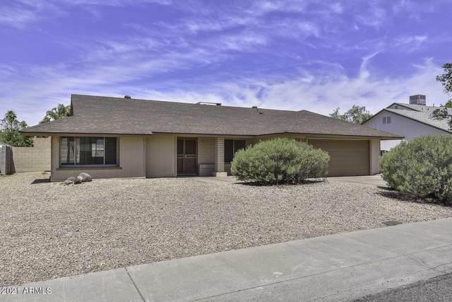 15838 N 23RD Lane, Phoenix, AZ 85023 (MLS #6249391) :: Executive Realty Advisors