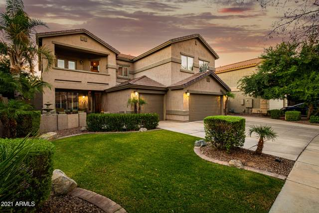 252 W Pelican Drive, Chandler, AZ 85286 (MLS #6249402) :: Klaus Team Real Estate Solutions