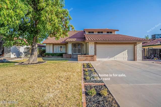 2101 E Ludlow Drive, Phoenix, AZ 85022 (MLS #6249407) :: Dave Fernandez Team | HomeSmart