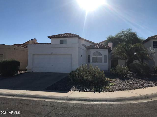 11039 N 111TH Place, Scottsdale, AZ 85259 (MLS #6249424) :: The Copa Team   The Maricopa Real Estate Company