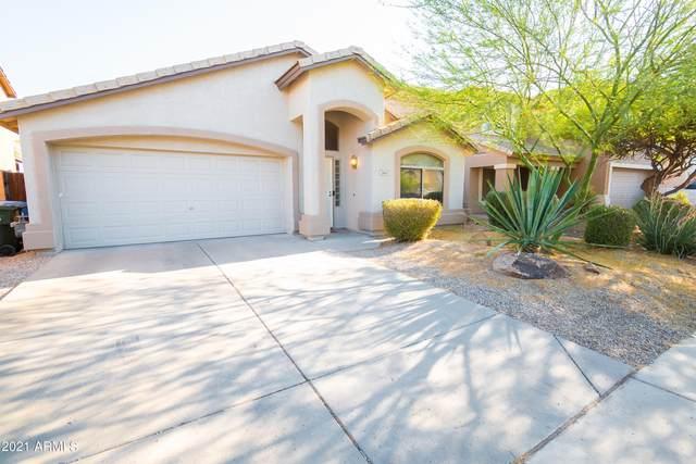 2414 W Running Deer Trail, Phoenix, AZ 85085 (MLS #6249434) :: Klaus Team Real Estate Solutions