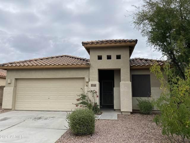 17397 N 169TH Drive, Surprise, AZ 85374 (MLS #6249441) :: Dave Fernandez Team | HomeSmart