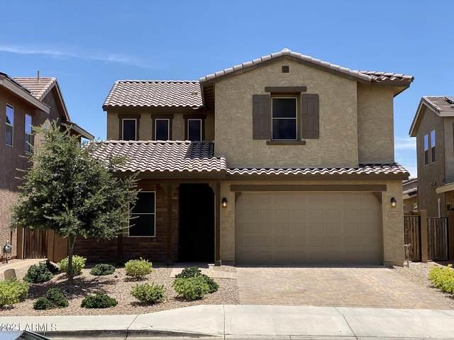 26217 N 121ST Lane, Peoria, AZ 85383 (MLS #6249464) :: Power Realty Group Model Home Center