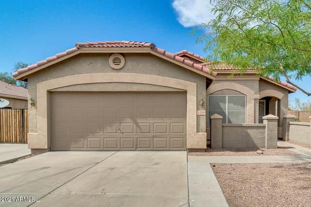 1130 E Pedro Road, Phoenix, AZ 85042 (MLS #6249481) :: Yost Realty Group at RE/MAX Casa Grande