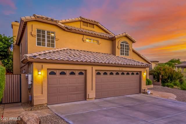 13433 N 13TH Street, Phoenix, AZ 85022 (MLS #6249491) :: Dave Fernandez Team | HomeSmart