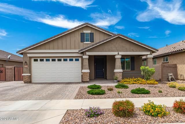 20332 E Reins Road, Queen Creek, AZ 85142 (MLS #6249513) :: Klaus Team Real Estate Solutions