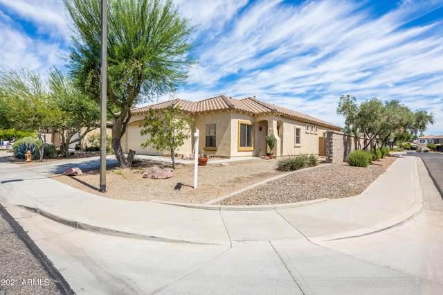 17150 W Saguaro Lane, Surprise, AZ 85388 (MLS #6249524) :: Yost Realty Group at RE/MAX Casa Grande