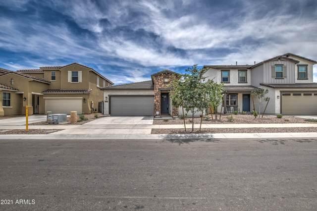 10837 W San Juan Avenue, Phoenix, AZ 85037 (MLS #6249549) :: Midland Real Estate Alliance