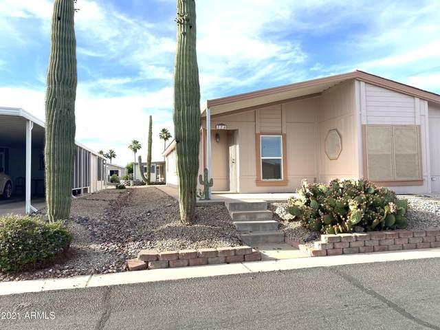 2400 E Baseline Avenue #116, Apache Junction, AZ 85119 (MLS #6249585) :: Klaus Team Real Estate Solutions
