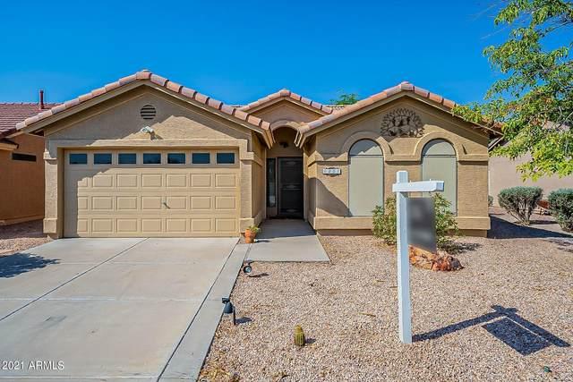 9005 E Copper Valley Lane, Sun Lakes, AZ 85248 (MLS #6249601) :: Midland Real Estate Alliance