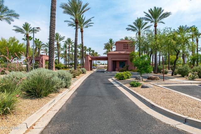 17466 N Amberwood Drive, Surprise, AZ 85374 (MLS #6249632) :: The Riddle Group