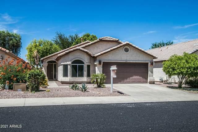 928 E Pontiac Drive, Phoenix, AZ 85024 (MLS #6249633) :: Yost Realty Group at RE/MAX Casa Grande
