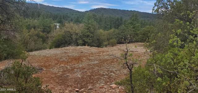 0 N Elk Song Trail, Young, AZ 85554 (MLS #6249641) :: Dave Fernandez Team | HomeSmart