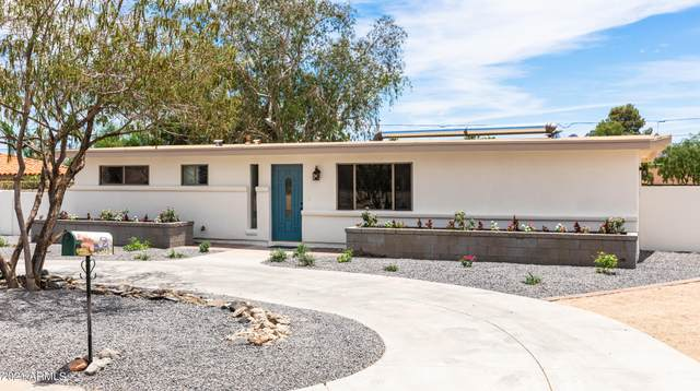 2571 E Captain Dreyfus Avenue, Phoenix, AZ 85032 (MLS #6249653) :: Yost Realty Group at RE/MAX Casa Grande