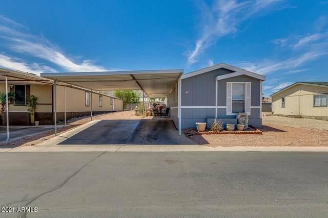 303 E South Mountain Avenue #76, Phoenix, AZ 85042 (MLS #6249660) :: Yost Realty Group at RE/MAX Casa Grande