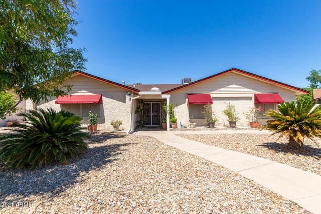 15810 N 48TH Avenue, Glendale, AZ 85306 (MLS #6249715) :: Power Realty Group Model Home Center