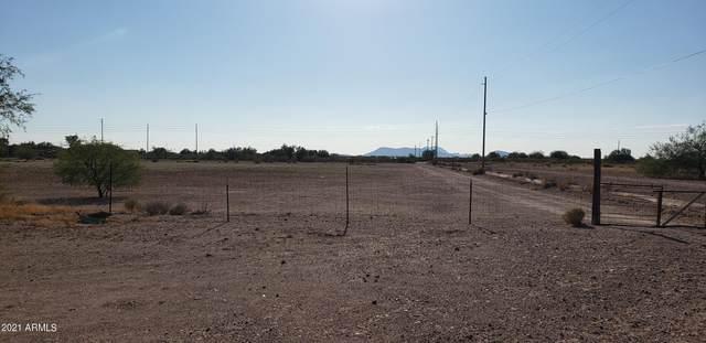 2407 S 339TH Avenue, Tonopah, AZ 85354 (MLS #6249735) :: Howe Realty