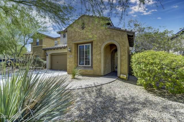 3817 E Matthew Drive E, Phoenix, AZ 85050 (MLS #6249739) :: Dave Fernandez Team   HomeSmart