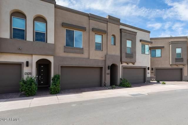 7427 E Paraiso Drive, Scottsdale, AZ 85255 (MLS #6249757) :: The AZ Performance PLUS+ Team