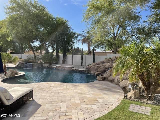 3914 E Cherry Hill Drive, Queen Creek, AZ 85142 (MLS #6249772) :: Yost Realty Group at RE/MAX Casa Grande