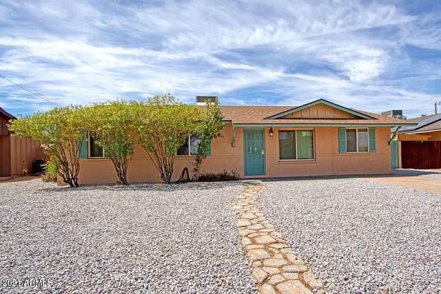 3209 E Marilyn Road, Phoenix, AZ 85032 (MLS #6249798) :: Devor Real Estate Associates