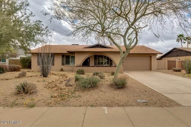 5121 E Blanche Drive, Scottsdale, AZ 85254 (MLS #6249822) :: Yost Realty Group at RE/MAX Casa Grande