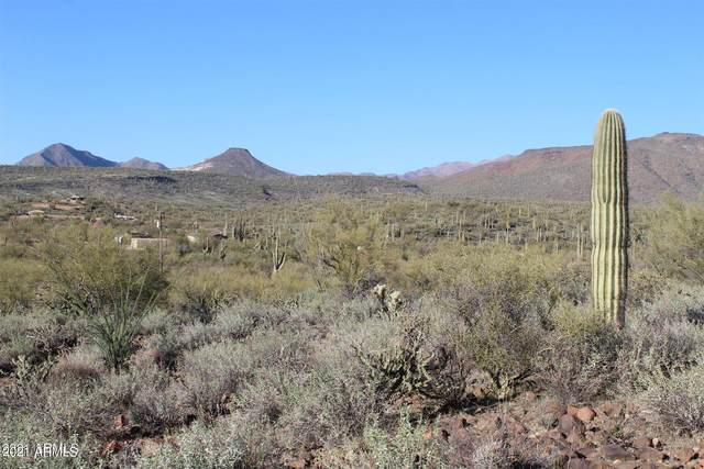 X N Central Avenue, New River, AZ 85087 (MLS #6249834) :: The Riddle Group