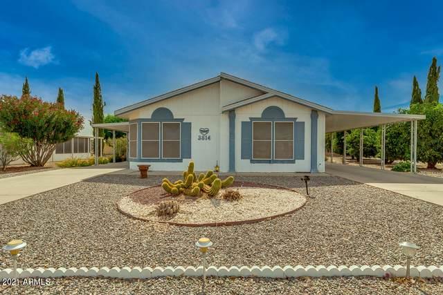3814 N Wisconsin Avenue, Florence, AZ 85132 (MLS #6249900) :: Executive Realty Advisors