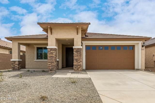 22825 E Marsh Road, Queen Creek, AZ 85142 (MLS #6249918) :: Midland Real Estate Alliance