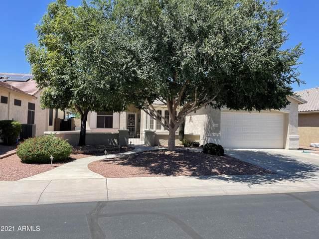 17950 W Camino Real Drive, Surprise, AZ 85374 (MLS #6249929) :: Devor Real Estate Associates