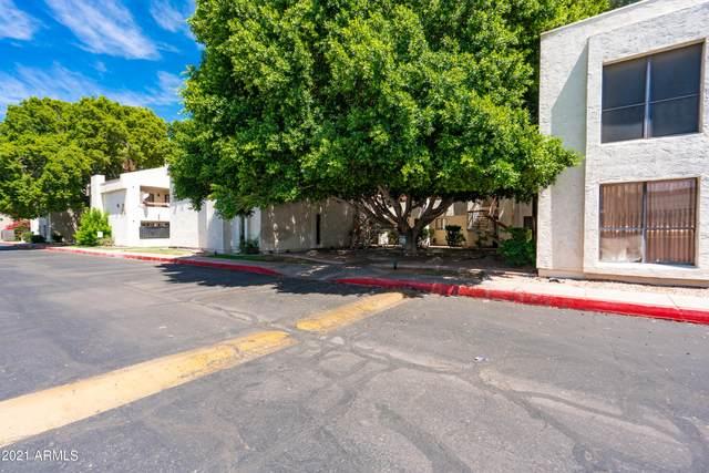 3119 W Cochise Drive #142, Phoenix, AZ 85051 (MLS #6249935) :: Nate Martinez Team