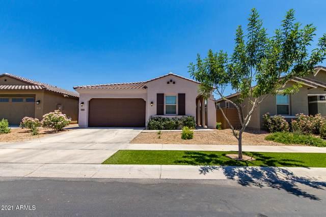 2837 E Fraktur Road, Phoenix, AZ 85040 (MLS #6249963) :: Long Realty West Valley