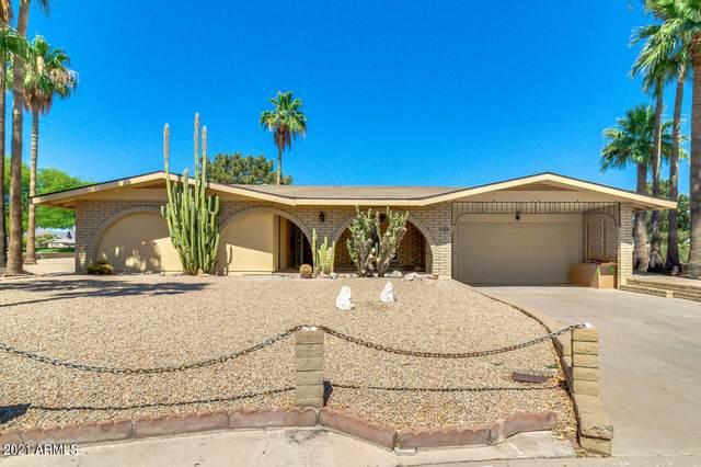 709 S 81ST Place, Mesa, AZ 85208 (MLS #6249978) :: Yost Realty Group at RE/MAX Casa Grande