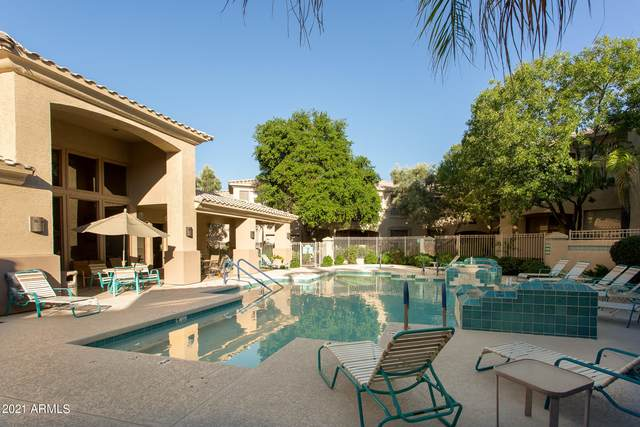 9550 E Thunderbird Road #174, Scottsdale, AZ 85260 (MLS #6249984) :: The Laughton Team