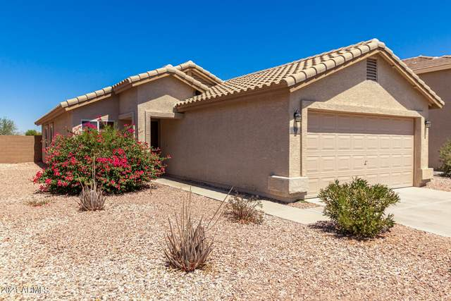 1071 S 224TH Lane, Buckeye, AZ 85326 (MLS #6250003) :: Devor Real Estate Associates