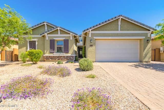 7932 W Fetlock Trail, Peoria, AZ 85383 (MLS #6250032) :: Yost Realty Group at RE/MAX Casa Grande