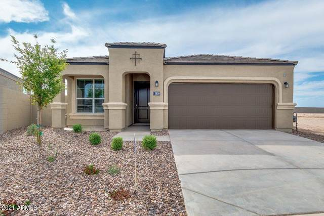 2955 N Camden Drive N, Florence, AZ 85132 (MLS #6250035) :: Executive Realty Advisors