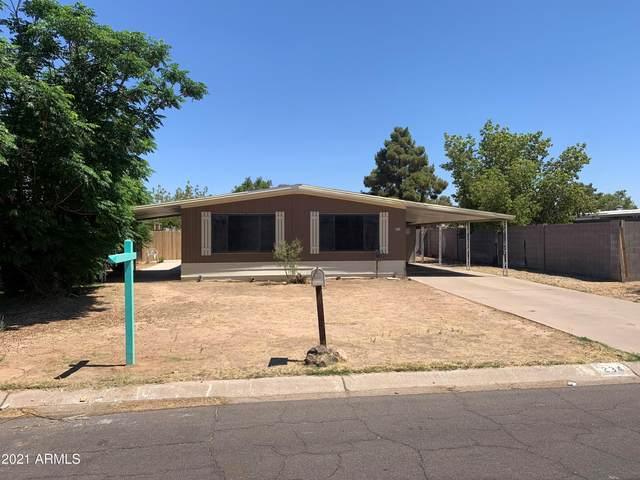 234 E Michelle Drive, Phoenix, AZ 85022 (MLS #6250059) :: Power Realty Group Model Home Center