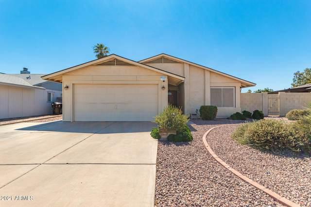9770 N 68TH Lane, Peoria, AZ 85345 (MLS #6250083) :: Lucido Agency