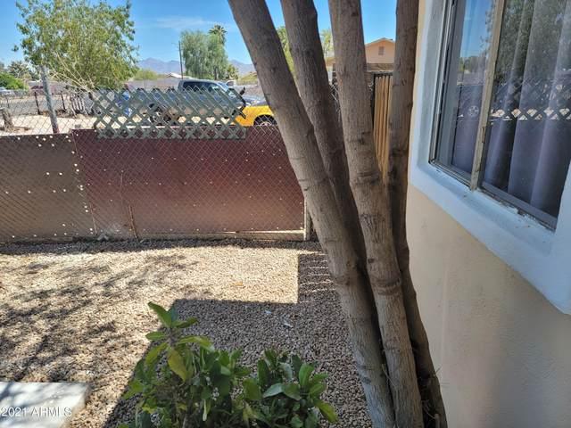 814 S Greenleaf Lane, Avondale, AZ 85323 (MLS #6250098) :: Power Realty Group Model Home Center
