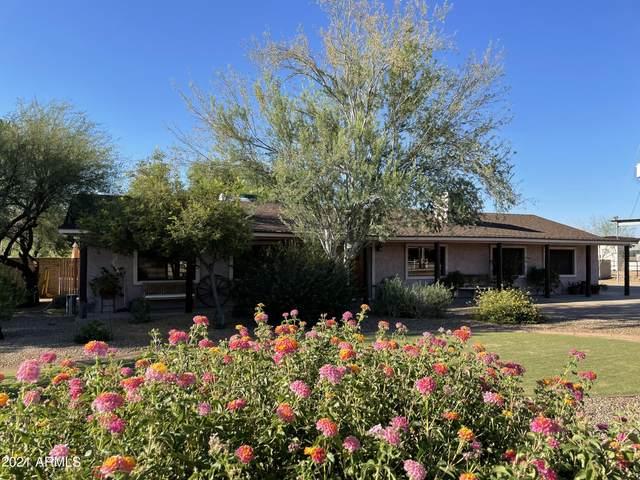 1428 E Sandra Terrace, Phoenix, AZ 85022 (MLS #6250115) :: Klaus Team Real Estate Solutions