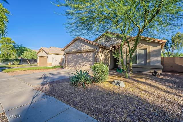 8117 W Preston Lane, Phoenix, AZ 85043 (MLS #6250127) :: Executive Realty Advisors