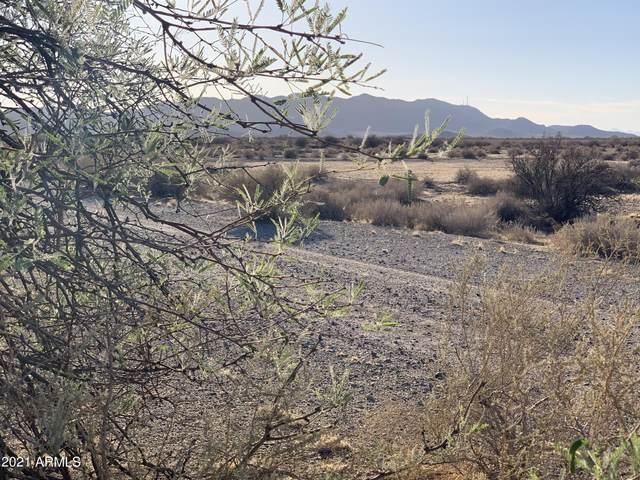 5605 W Tonto Road, Eloy, AZ 85131 (MLS #6250129) :: The AZ Performance PLUS+ Team