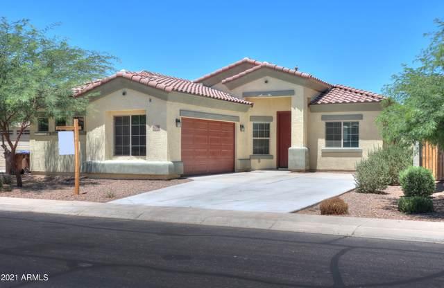 42308 W Balsa Drive, Maricopa, AZ 85138 (MLS #6250133) :: Executive Realty Advisors